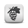 Icon-fruit.png